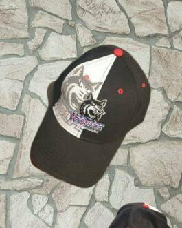 Cap ~ Netz Logo schwarz